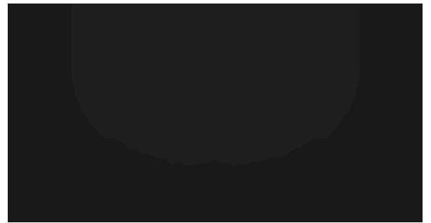 Law Offices of Solomon Aminov PC | Personal Injury Attorney NYC | Personal Injury Attorney Brooklyn